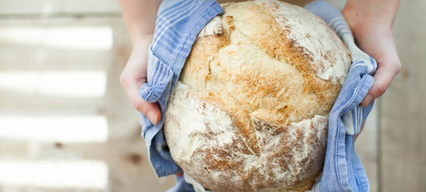 Gluten: Reasons to Give itUp