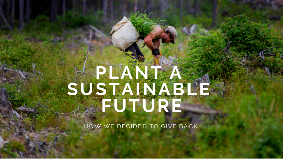 MSL Plant a Sustainable Future