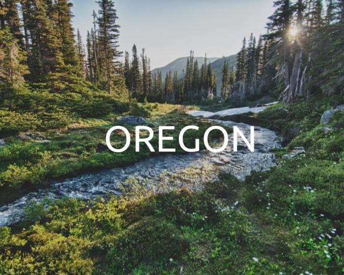 Oregon_Plant_Trees_One_Tree_Planted_2000x