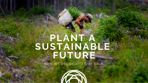 plant a sustainable future564156213